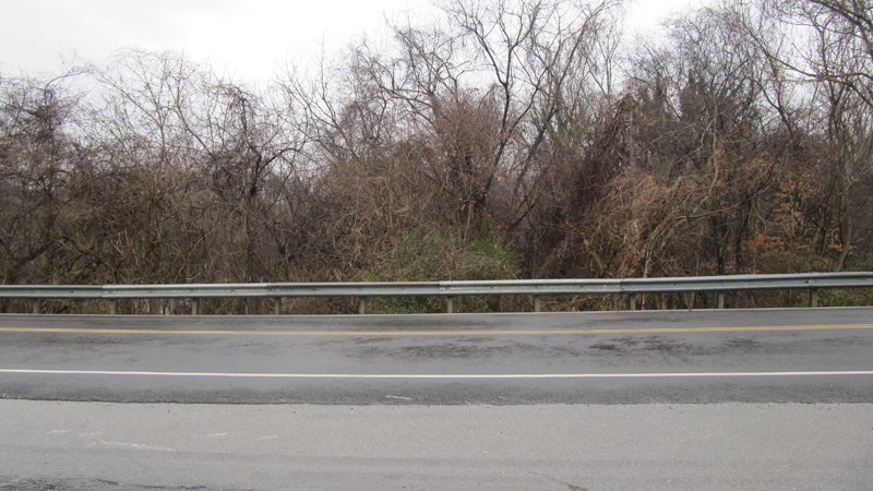 Absolute Auction – Sale #9 of 9: Approx. 1.7 Acres comprised of 9 Tax Parcels in Lenoir City